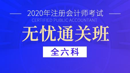 2020年注册会计师通关班(全六科)