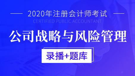 2020年注册会计师-公司战略与风险管理(录播+题库)