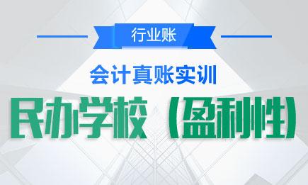 【实操】民办学校(盈利性)会计真账实操